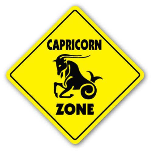CAPRICORN ZONE Sign novelty gift zodiac horoscope