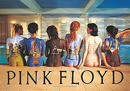 LPGI Pink Floyd Back Catalogue Fabric Poster, 30 by (Clothes Catalogues)