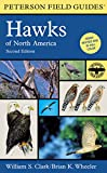 A Field Guide to Hawks of North America (Peterson Field Guides)