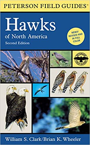 BIRDS OF PREY - BOOKS 51m3TUsQCwL._SX308_BO1,204,203,200_
