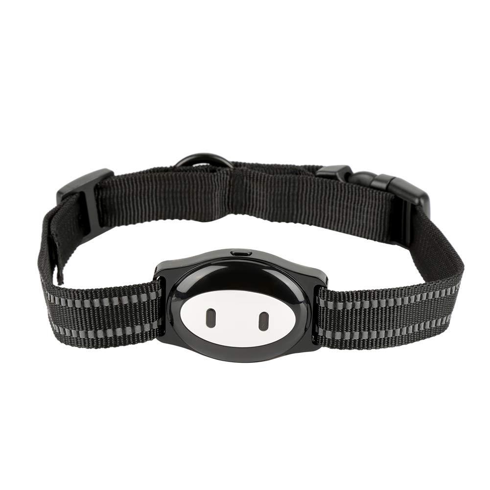 Jimfoty GPS Dog Cat Tracker, localizador de Collar GPS para ...