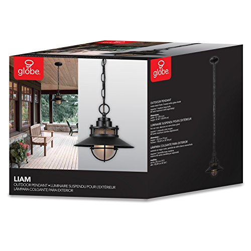 Globe Electric Liam Outdoor Pendant, Matte Black by Globe Electric (Image #1)