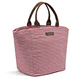 Best Lunch Bags For Ladies - LOKASS Lunch Bag Tote Bag Lunch Box Insulated Review