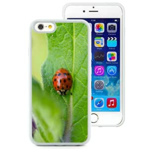 New Custom Designed Cover Case For iPhone 6 4.7 Inch TPU With Ladybug On A Leaf Animal Mobile Wallpaper (2) Phone Case
