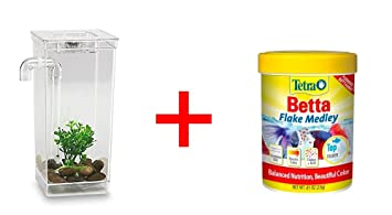 My Fun Fish Tank 4 3//4 x 6 x 10-Inch Aquarium Self-Cleaning Plastic Betta Gifts