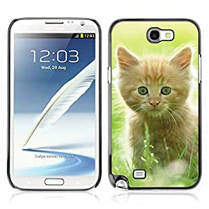 Hot Style Cell Phone PC Hard Case Cover // V0000916 Cat Kitty Animal Pattern // Samsung Galaxy Note 2 N7100