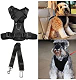 Pet Dog Cat Car Auto Vehicle Safety Harness with Tether Seatbelt Chest Plate Car Dog Harness, Best Seat Belt Car Harness Restraints Seatbelts for Pets Dogs Adjustable
