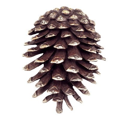 SPI Home 30746 Pinecone Doorknocker by SPI Home (Image #1)