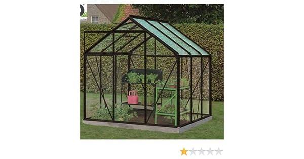 Daisy cristal trempé- 3, 8 m²: Amazon.es: Jardín