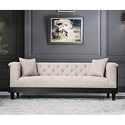 Amazon.com: Furniture of America Leon Transitional Sofa in ...