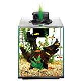 Aqueon LED Aqua Springs Aquarium Fish Tank Starter Kit Size 11