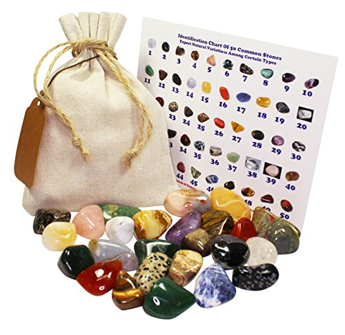 1 Full Lb Natural (no dyed) Mixed Tumbled Stones Bulk Set Crystals Mineral Rock Collection Specimen Kit
