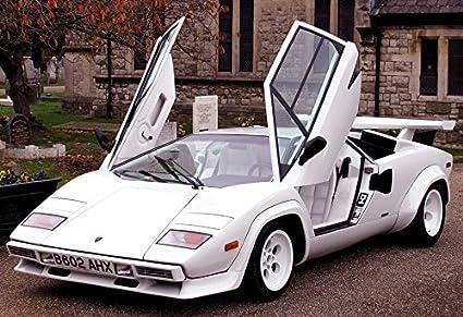 Amazon.com : Lamborghini Countach Poster 13x19