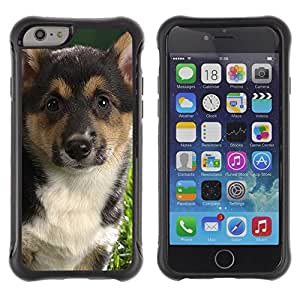 Suave TPU GEL Carcasa Funda Silicona Blando Estuche Caso de protección (para) Apple Iphone 6 / CECELL Phone case / / German Shepherd Corgi Fox Terrier Dog /