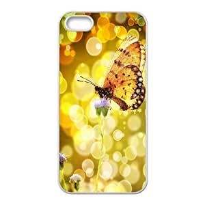Butterfly ZLB538302 Customized Case for Iphone 5,5S, Iphone 5,5S Case by icecream design