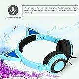 Cat Ear Headphones With Glowing Ears Cartoon