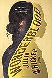 Wonderblood: A Novel
