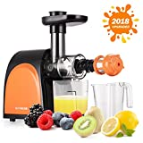 jug juice - Slow Masticating Juicer,Cold Press Juicer Machine[2018 Upgraded] with Juice Jug and Brush to Clean Conveniently,More high Quality and Quiet Motor Juicer Machine for all Fruits and Vegetables.