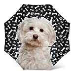 Maltese Dog Print Umbrella - Windproof Travel Folding Golf Umbrella - Best Dog Mom Gifts