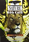 Nature: Big Cats