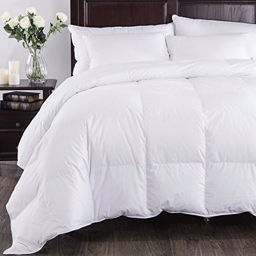 Best Fluffy White Comforter: Amazon.com LR16
