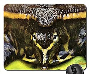 Spiny Soft Shell Turtle Mouse Pad, Mousepad (10.2 x 8.3 x 0.12 inches)