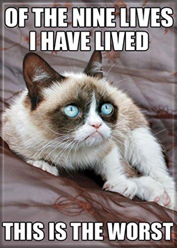 Ata-Boy Grumpy Cat