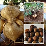 buy Hot Sale!!! Very Sweet Fruit And Vegetable Plants,High-Yield Sweet Potato Seeds,Vegetable Delicious And 20 Particle/ bag now, new 2018-2017 bestseller, review and Photo, best price $2.44