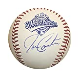 Joe Carter Toronto Blue Jays Autographed 1993 World Series Signed Baseball JSA COA With UV Display Case
