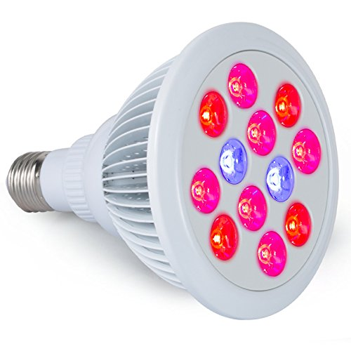 Lightimetunnel Lights Greenhouse Hydroponic Aquatic