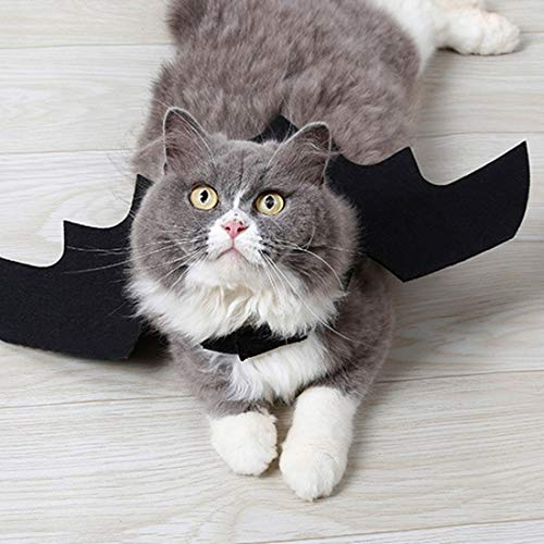 Party Diy Decorations - Halloween Creative Bat Costume Cat Vest Harness Wear Decoration -