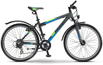 Winora Streethammer MTB - Bicicleta de montaña (26 pulgadas, 21 ...