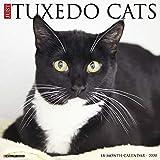 Just Tuxedo Cats 2020 Calendar