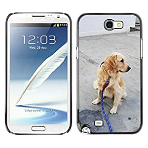Hot Style Cell Phone PC Hard Case Cover // M00131009 Dog Retriever Snood // Samsung Galaxy Note 2 II N7100