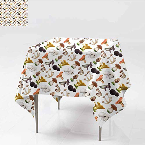 (Diycon Dust-Proof Tablecloth Mushroom Realistic Style Various Kinds of Fresh Toadstools Truffles Natural Lifestyle Cook Multicolor Washable Tablecloth W63 xL65)