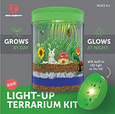 Light-up Terrarium Kit for Kids with LED Light on Lid   Create Your Own Customized Mini Garden in a Jar that Glows at Night   Great Science Kits Gifts for Children   Kids Toys   by Mini Explorer from Mini Explorer