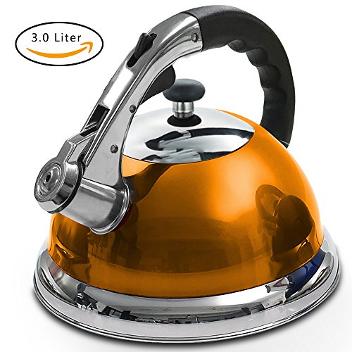 GULUBLOG Stainless Steel Whistling Tea Kettle Rust-Resistant