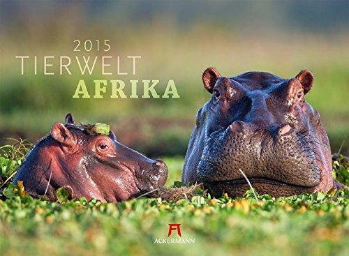 Tierwelt Afrika 2015 (Tierwelten)