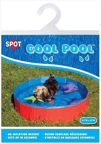 Best small dog pool: Ethical Pet Products DSO1003 Cool Pool