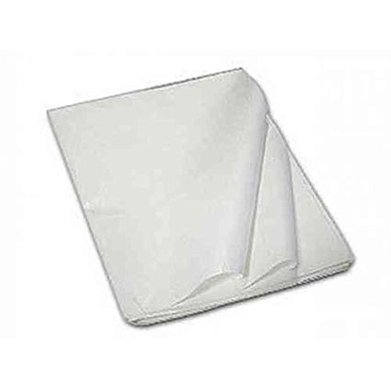 5 Kg fogli carta velina bianca 100 x 150 cm carta modelli per sarti 200 ff circa Aurora Store.it