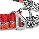 RUFFWEAR - Chain Reaction Dog Collar, Martingale