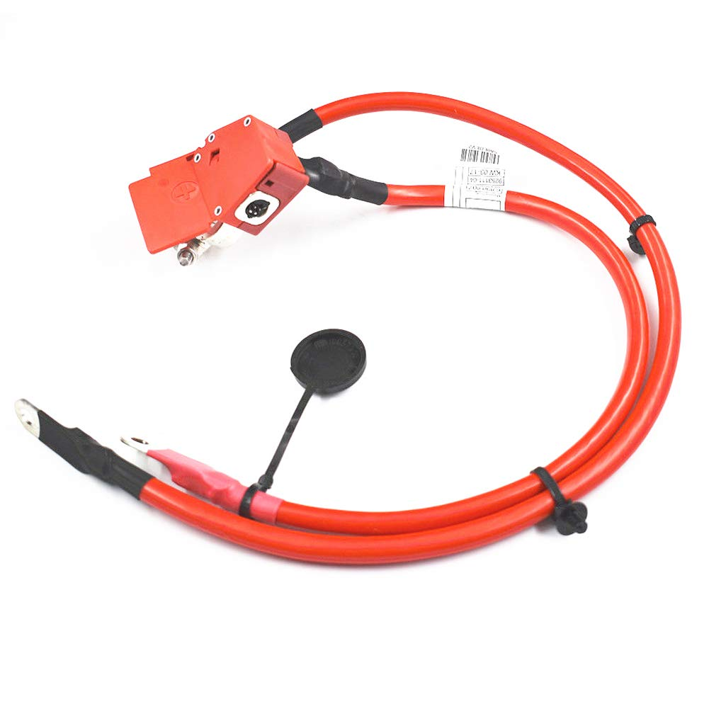 Ensun 61129253111 Car Stable Battery Cable Plus Pole for BMW F20 F21 F22 F87 F23 by ENSUN