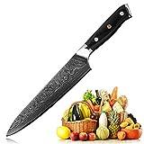 Professional Chef Knife Gyutou Knives LEGENDARY Series Japanese VG10 Damascus Steel Hammered Finish 8'' (200mm) G10 Ergonomics Handle Gift Box L210