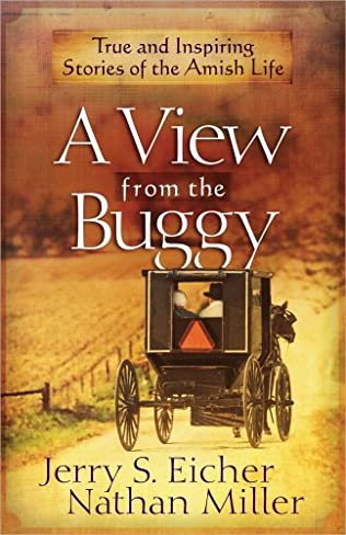 book cover of A View from the Buggy