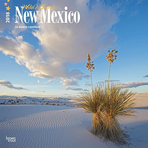 New Mexico, Wild & Scenic 2018 12 x 12 Inch Monthly Square Wall Calendar, USA United States of America Southwest State Nature (Multilingual Edition) (Scenic Calendar Featuring Photos)