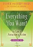 Everything You Want!: The Law of Attraction in Action, Episode VII