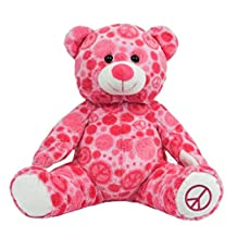 Personalized Message Recordable 15 Inch PINK/WHITE Talking Teddy Bear with 30 seconds of Recording Time.