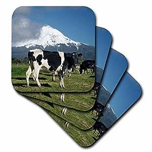 3dRose cst_71761_2 Dairy Cows, Farm Animals, Taranaki, New Zealand AU02 DWA4998 David Wall Soft Coasters, Set of 8