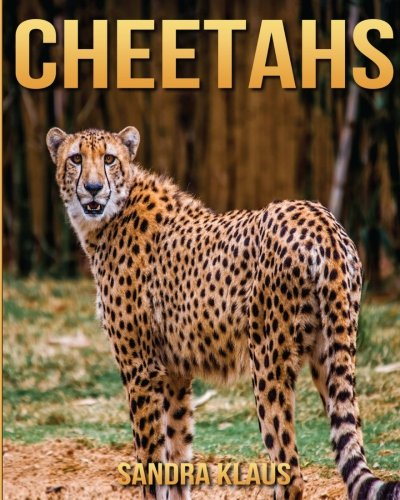 Childrens Book: Amazing Facts & Pictures about Cheetahs