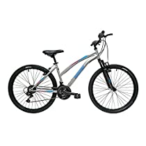 Discovery - Bicicleta Montaña Mountainbike 26